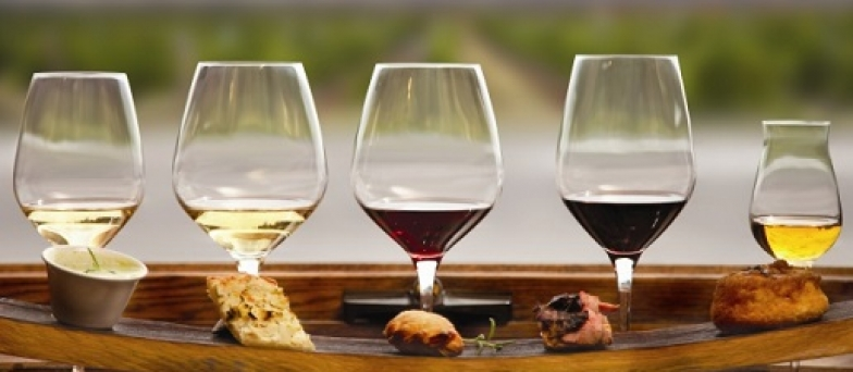Wine Food Pairing glasses food